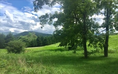 Blairsville Residential Lots & Land For Sale: Lt 15 Trackrock Church Rd.