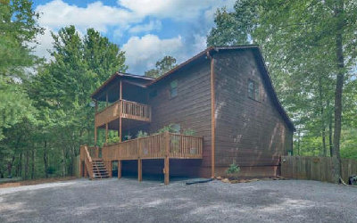 Ellijay Single Family Home For Sale: 145 Palisade Dr
