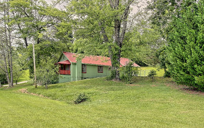 Young Harris Single Family Home For Sale: 7813 Ivy Log Gap Road