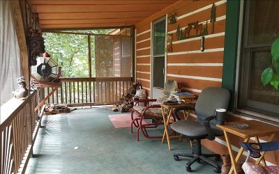 Ellijay Single Family Home For Sale: 913 New Liberty Road