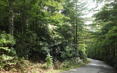 Blairsville Residential Lots & Land For Sale: Cook Mtn. Estates