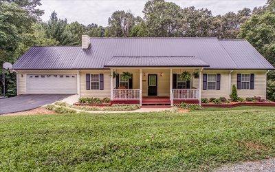 Ellijay Single Family Home For Sale: 295 Carson Cove Road