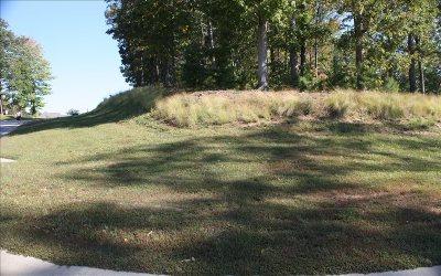 Ellijay Residential Lots & Land For Sale: Lt 85 Oakview Drive