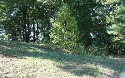 Ellijay Residential Lots & Land For Sale: Lt 16 The Oaks Drive