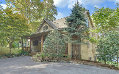 Young Harris Single Family Home For Sale: 2511 Leisure Lane