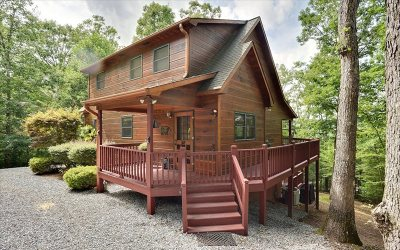 Blairsville Single Family Home For Sale: 422 Laura Beth Lane