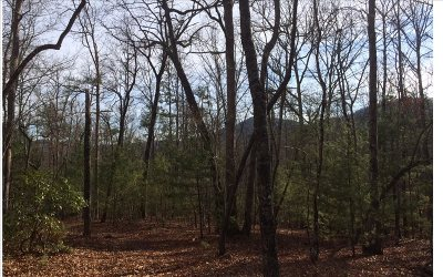 Blairsville Residential Lots & Land For Sale: 295 Payne Way