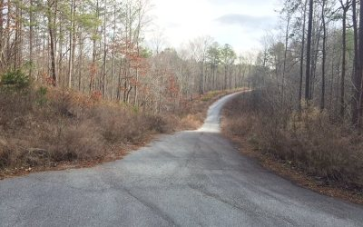 Ellijay Residential Lots & Land For Sale: Ivy Cove Lane