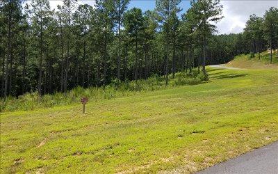 Blairsville Residential Lots & Land For Sale: Lt120 Thirteen Hundred
