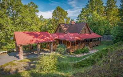 Hiawassee Single Family Home For Sale: 790 Fox Road