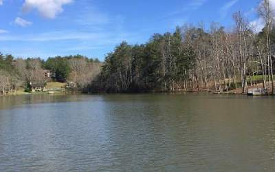Blairsville Residential Lots & Land For Sale: Lt 86 Fox Lake Road