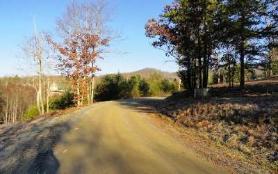 Blairsville Residential Lots & Land For Sale: 6.11 Barnes Creek Road