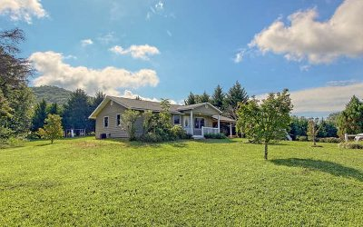Blairsville Single Family Home For Sale: 1022 Bradley Road