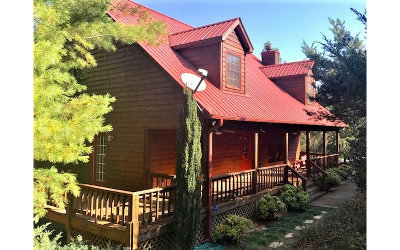 Blairsville Single Family Home For Sale: 716 Bitter Creek Rd