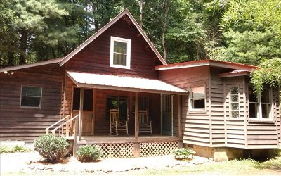 Blairsville Single Family Home For Sale: 4461 State Hwy 325