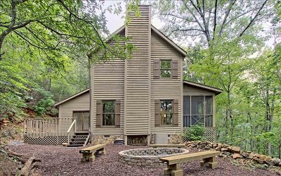 Ellijay Single Family Home For Sale: 43 Indian Gap Road