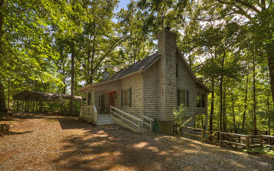 Blairsville Single Family Home For Sale: 45 Coby Ann Ln