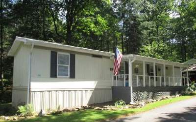 Hiawassee Single Family Home For Sale: 11 Knowles Lane