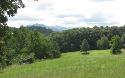 Young Harris Residential Lots & Land For Sale: #79 The Preserve At Cc
