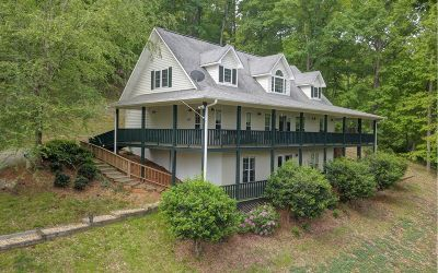 Blairsville Single Family Home For Sale: 93 Spring Lake Drive