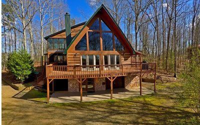 Mineral Bluff Single Family Home For Sale: 387 Granny Hughes