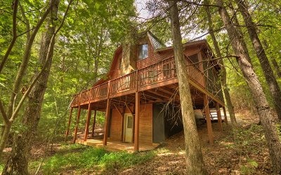 Ellijay Single Family Home For Sale: 354 Blackberry Mtn Dr