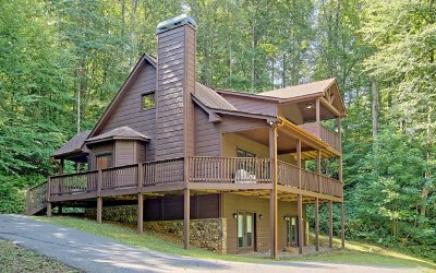 Hiawassee Single Family Home For Sale: 358 Country Lane