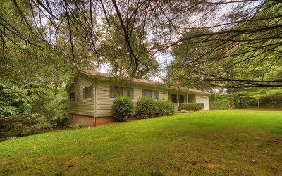 McCaysville Single Family Home For Sale: 1818 Old Mobile Road