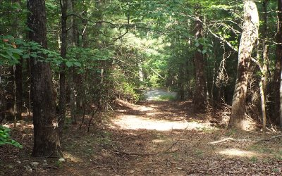Ellijay Residential Lots & Land For Sale: Parker Trail