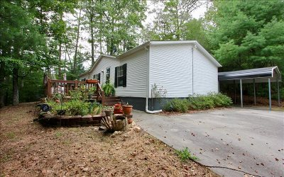 Blue Ridge Single Family Home For Sale: 1090 Tennis Court Road