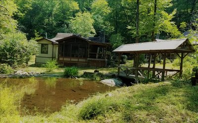 Hiawassee Single Family Home For Sale: 1493 Ruby Lake Drive