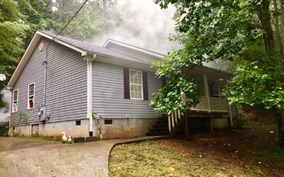 Blairsville Single Family Home For Sale: 147 Kirksey Cove Road
