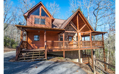 Blue Ridge Single Family Home For Sale: 16 Mountain Tops Circle