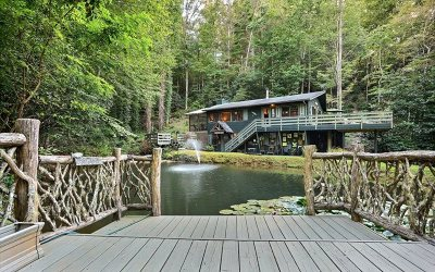 Blairsville Single Family Home For Sale: 210 Serenity Lane
