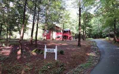 Hiawassee Single Family Home For Sale: 2515 Buck Run
