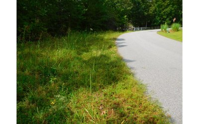 Blairsville GA Residential Lots & Land For Sale: $69,900