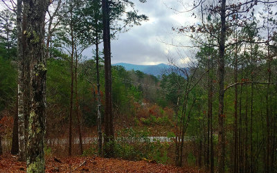 Blue Ridge Residential Lots & Land For Sale: 1.78a North Dream Catcher