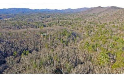 Ellijay GA Residential Lots & Land For Sale: $89,750