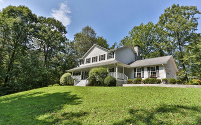 Ellijay Single Family Home For Sale: 430 Crabapple Lane
