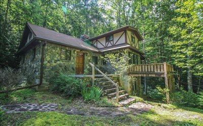 Andrews Single Family Home For Sale: 350 Genesis Lane