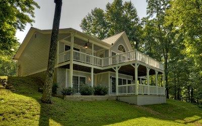Ellijay Single Family Home For Sale: 40 Mountain Oak Court