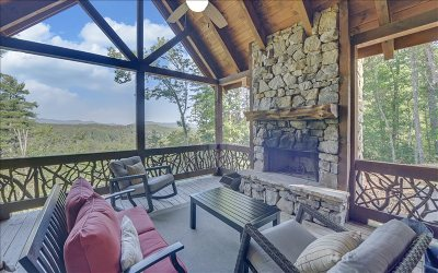 Mineral Bluff Single Family Home For Sale: 55 Pinnacle Drive