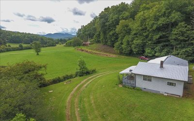 Cherokee County Single Family Home For Sale: 1393 Bluff Road