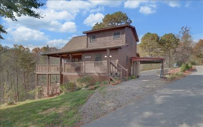 Murphy Single Family Home For Sale: 325 Hidden Lane