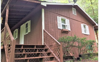 Ellijay Single Family Home For Sale: 3185 Old Flat Branch Road