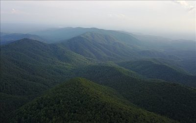 Ellijay Residential Lots & Land For Sale: 82 Ac Fort Mountain