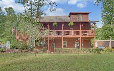 Blairsville Single Family Home For Sale: 245 Cedar Creek