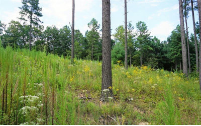 Blairsville Residential Lots & Land For Sale: 138 Deyton Drive Lot