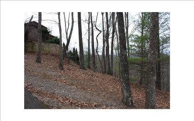 Blairsville Residential Lots & Land For Sale: Lot R Moon Shadow View N