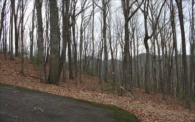 Blairsville Residential Lots & Land For Sale: Lot U Moon Shadow View
